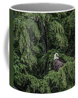 The Dark Eyed One Coffee Mug by Timothy Latta