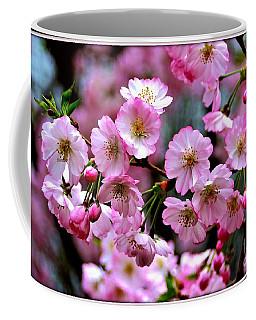 The Delicate Cherry Blossoms Coffee Mug