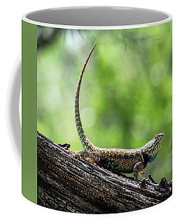 Coffee Mug featuring the photograph The Desert Spiny Stance  by Saija Lehtonen