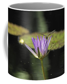 The Dragonfly And The Lily Coffee Mug