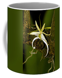 The Elusive And Rare Ghost Orchid Coffee Mug