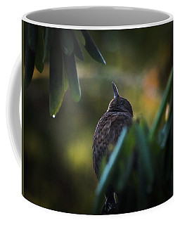 The Eurasian Blackbird Female In Spring Morning Coffee Mug