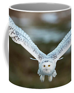 Coffee Mug featuring the photograph The Eyes Of Intent by Everet Regal