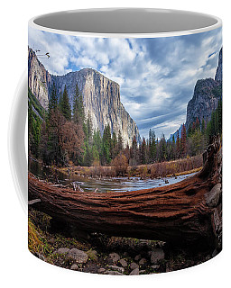 Coffee Mug featuring the photograph The Fallen  by Jonathan Nguyen
