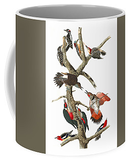 Coffee Mug featuring the photograph The Fight by Munir Alawi
