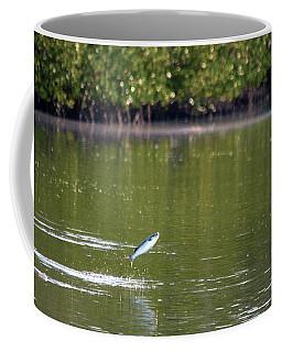 The Fish Are Jumping Coffee Mug