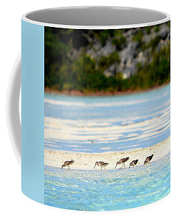 The Five Sandpipers Coffee Mug