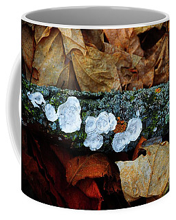Coffee Mug featuring the photograph The Forest Floor - Cascade Wi by Mary Machare