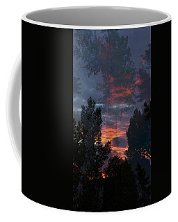 The Forest Through The Trees Coffee Mug