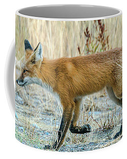 Coffee Mug featuring the photograph The Fox In Fall by Yeates Photography