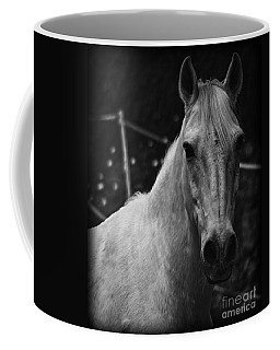 The General Coffee Mug by Clare Bevan