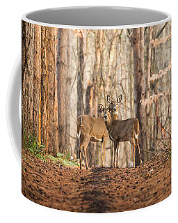The Gift Coffee Mug by Everet Regal