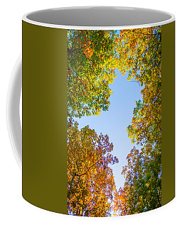 Coffee Mug featuring the photograph The Glory Of Autumn by Parker Cunningham