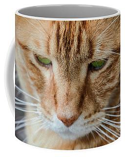 The Golden Boy Coffee Mug