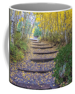Coffee Mug featuring the photograph The Golden Path 2 by Jonathan Nguyen