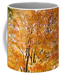 Coffee Mug featuring the photograph The Golden Takeover by Robert Knight