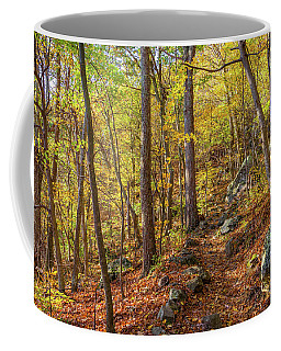 Coffee Mug featuring the photograph The Golden Trail by Lori Coleman