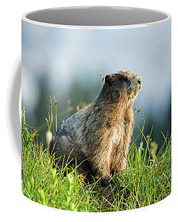 Coffee Mug featuring the photograph The Good Side by Mike Dawson