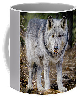 The Great Gray Wolf Coffee Mug