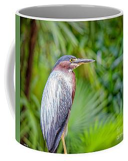 The Green Heron Coffee Mug