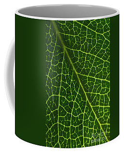 Coffee Mug featuring the photograph The Green Network by Ana V Ramirez
