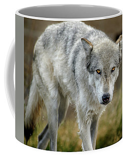 The Grey Wolf Shake Coffee Mug