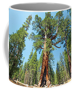 The Grizzly Giant- Coffee Mug