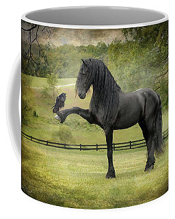 Black Raven Photographs Coffee Mugs