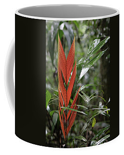 The Heart Of The Amazon Coffee Mug