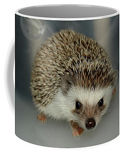 The Hedgehog Coffee Mug
