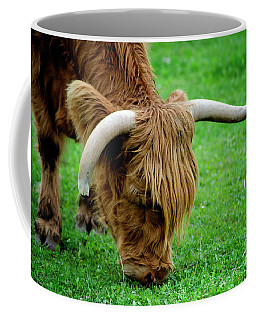 Coffee Mug featuring the photograph the Highland cattle by Michelle Meenawong
