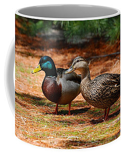 The Honeymooners - Mallard Ducks  Coffee Mug