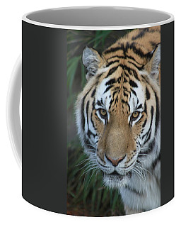 Coffee Mug featuring the photograph The Hunter by Laddie Halupa