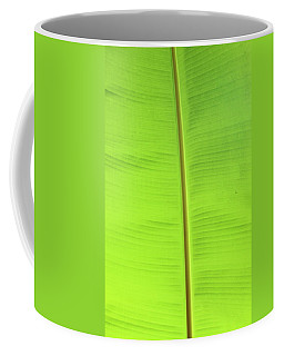 The Jungle Illuminated Coffee Mug
