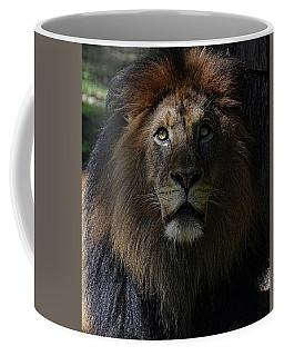 The King In Awe Coffee Mug