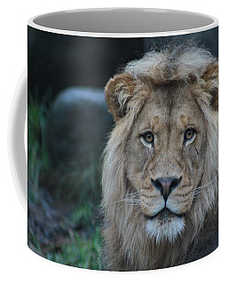 Coffee Mug featuring the photograph The King by Laddie Halupa