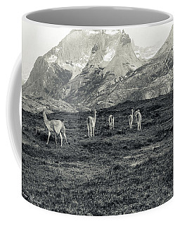The Lamas Coffee Mug by Andrew Matwijec