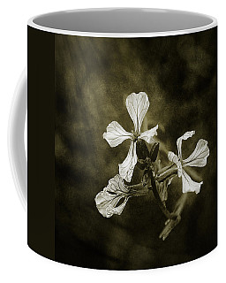 The Last Flowers Of Autumn Coffee Mug