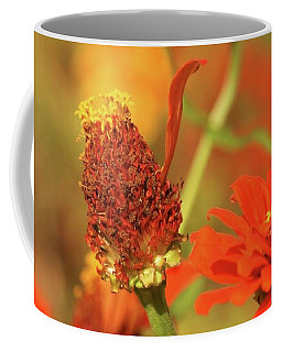 The Last Petal Coffee Mug by Donna G Smith