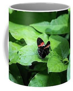 The Leaf Is My Plate Coffee Mug