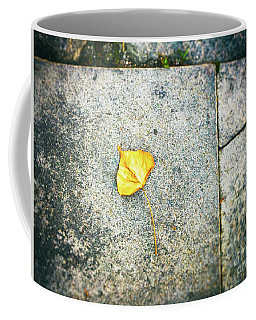 Coffee Mug featuring the photograph The Leaf by Silvia Ganora