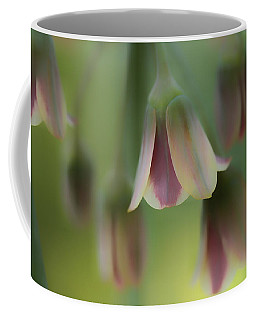 The Light Inside The Belfry  Coffee Mug