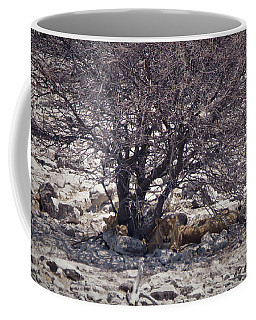 Coffee Mug featuring the photograph The Lion Family by Ernie Echols