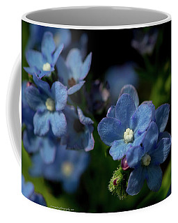 The Little Windflower Coffee Mug