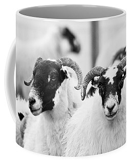 The Locals Coffee Mug