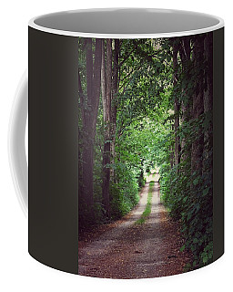 The Long Driveway Coffee Mug by Karen Stahlros