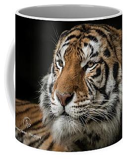 The Long Stare Coffee Mug