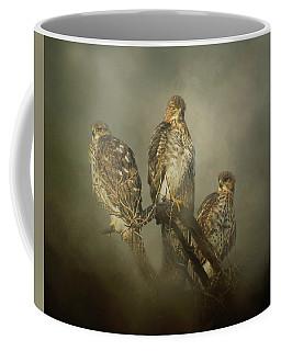 The Lookouts Coffee Mug