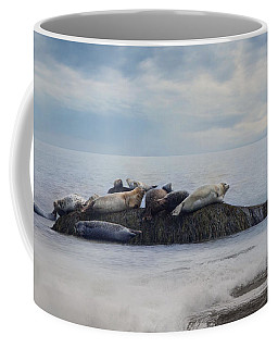Coffee Mug featuring the photograph The Lounge In by Robin-Lee Vieira