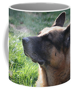The Love Of An Old Dog Coffee Mug